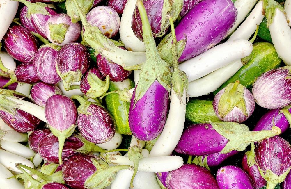 Resized eggplant